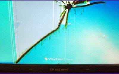 netbook-display-reparatur-samsung-netbook-display-ist-gebrochen.jpg