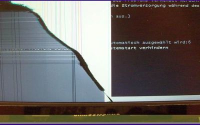 netbook-display-reparatur-samsung-netbook-hat-gebrochenes-display_v1.jpg