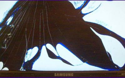 netbook-display-reparatur-samsung-netbook-nc10-hat-defekten-screen.jpg