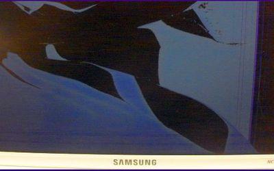 samsung-nc10-netbook-display-gebrochen.jpg