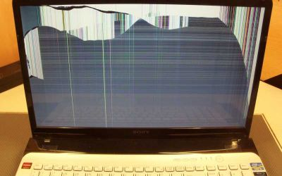 vaio-sve1713g4e-display-gebrochen.jpg