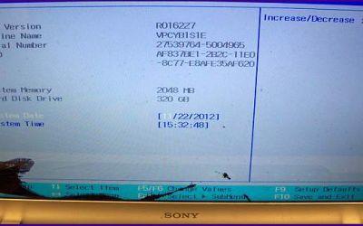 Bildschirm im VPCYB1 Notebook ist gebrochen.