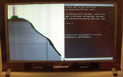 samsung-netbook-display-defekt.jpg