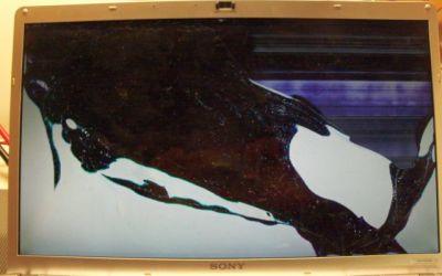 Display_164dffhd.jpg