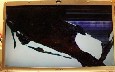 Display_164dffhd-014.jpg