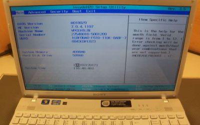 Displayaustausch_Sony_VAIO_VPC_173_intakt.jpg