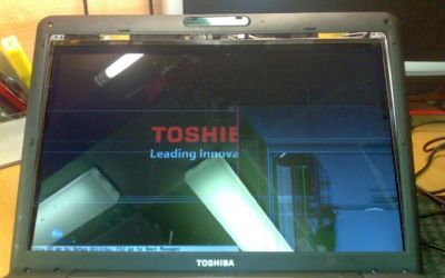Toshiba_Satellite_Display_defekt.jpg