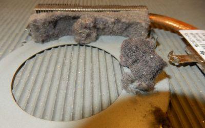 hp-pavilion-g7-1332eg-kuehler-sind-selten-so-extrem-stark-verschmutzt.jpg