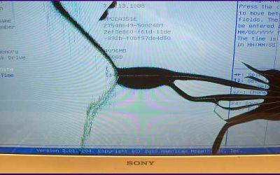 sony-vaio-vpcca3-display-gebrochen.jpg